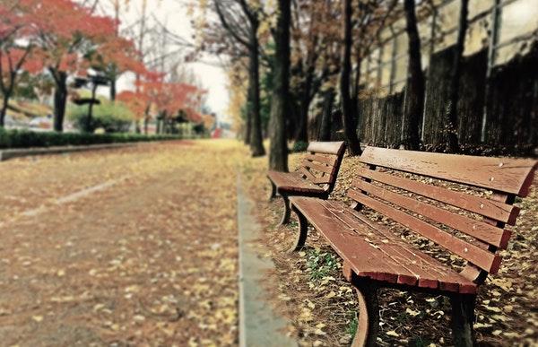沈阳:社区里的暖心长椅